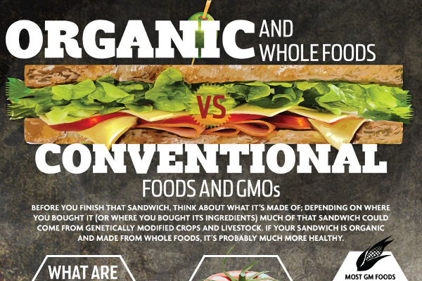 good thesis organic food Get an answer for 'how do i put these ideas into a thesis statement even though not everyone eats at a fast food homegrown organic groceries due to the.