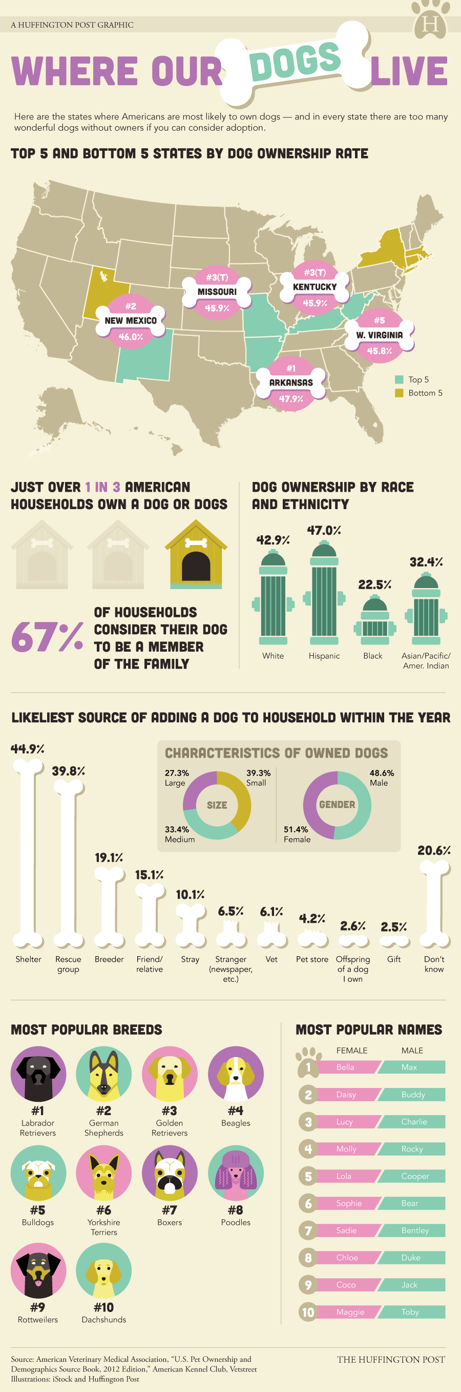 United States Dog Ownership Rates