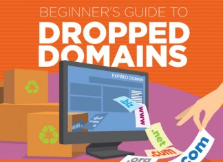 17 Vital Tips for Buying Dropped Domains