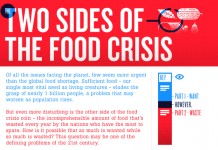 19 Scarey Food Shortage Statistics