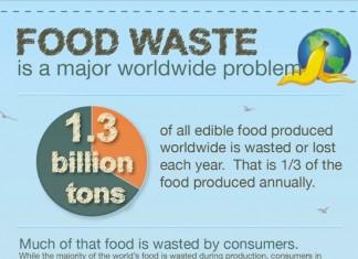 16 Important World Food Consumption Statistics