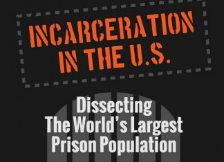 23 Amazing Demographics of Prison Population