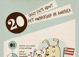 24 Awesome Pet Ownership Demographics
