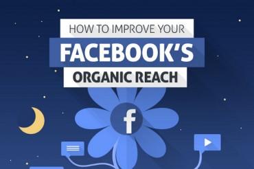 11 Vital Facebook News Feed Algorithm Tips