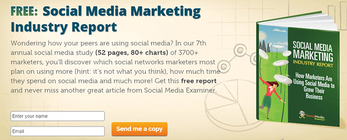 email-lead-magnet-example-report