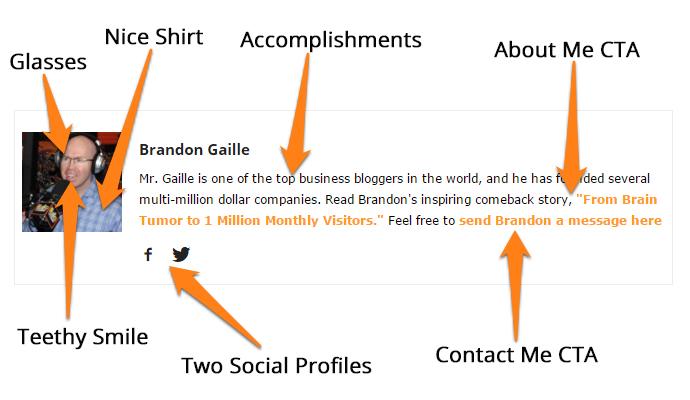 perfect-blog-bio-template