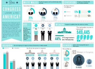43 Key US Congress Demographics