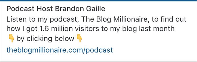 instagram-bio-example