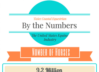 42 Amazing Equine Industry Trends