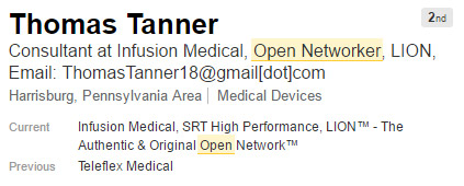 linkedin-open-networker-profile-example