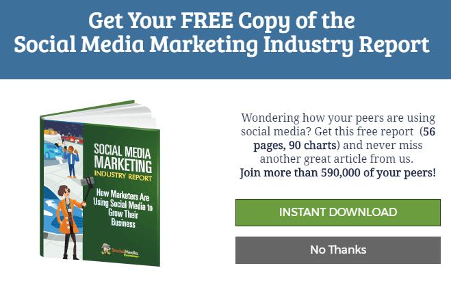 social-media-examiner-industry-report