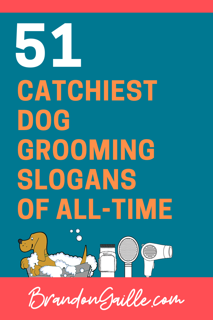 Dog Grooming Slogans