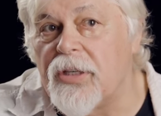 35 Priceless Paul Watson Quotes