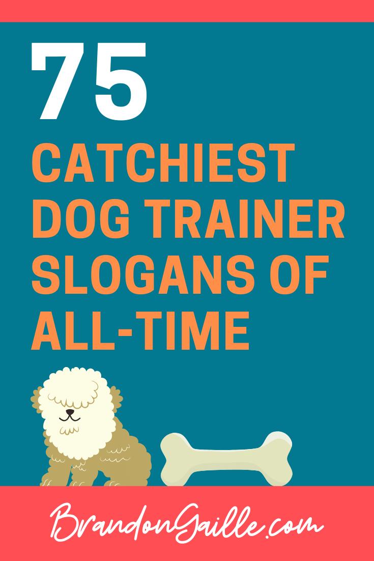 Dog Trainer Slogans