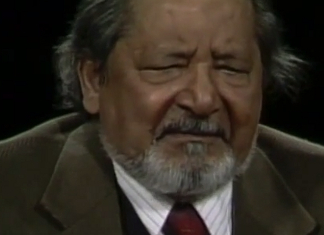 49 Fascinating V. S. Naipaul Quotes