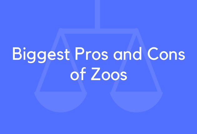 pros and cons of zoos Zoo pros: education, conservation, entertainment - zoo pros include education, conservation and entertainment learn how zoo pros like captive breeding programs benefit animals.