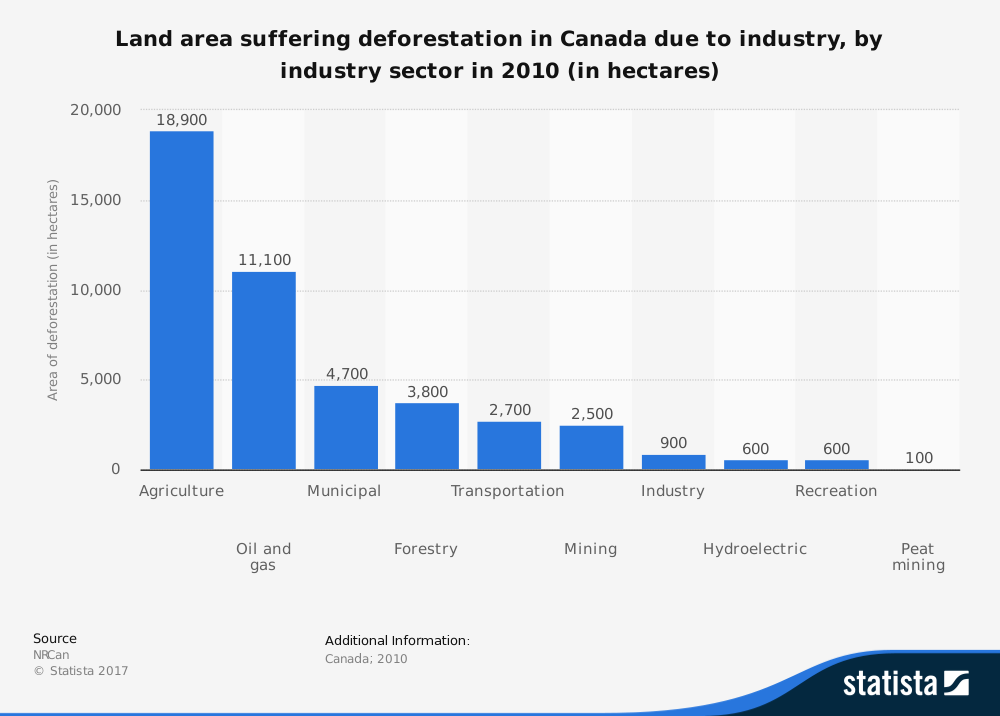 Deforestation Disadvantages Statistics