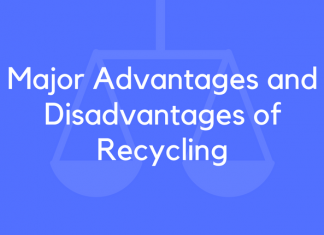 Major Advantages and Disadvantages of Recycling
