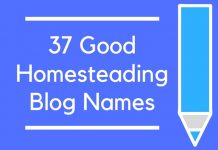 37 Good Homesteading Blog Names
