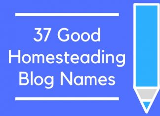 37 Good Homesteading Blog Names