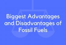 Biggest Advantages and Disadvantages of Fossil Fuels