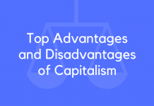 Top Advantages and Disadvantages of Capitalism