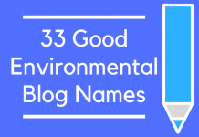 33 Good Environmental Blog Names