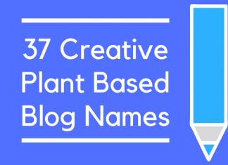 37 Creative Plant Based Blog Names