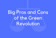 Big Pros and Cons of the Green Revolution