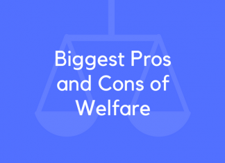 Biggest Pros and Cons of Welfare