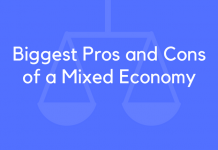 Biggest Pros and Cons of a Mixed Economy