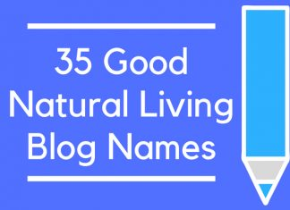 35 Good Natural Living Blog Names