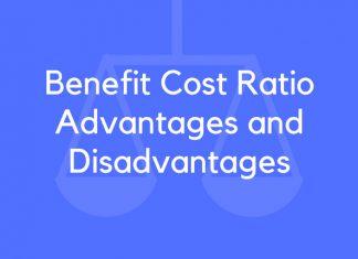 Benefit Cost Ratio Advantages and Disadvantages