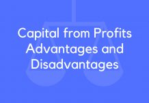 Capital from Profits Advantages and Disadvantages