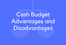 Cash Budget Advantages and Disadvantages