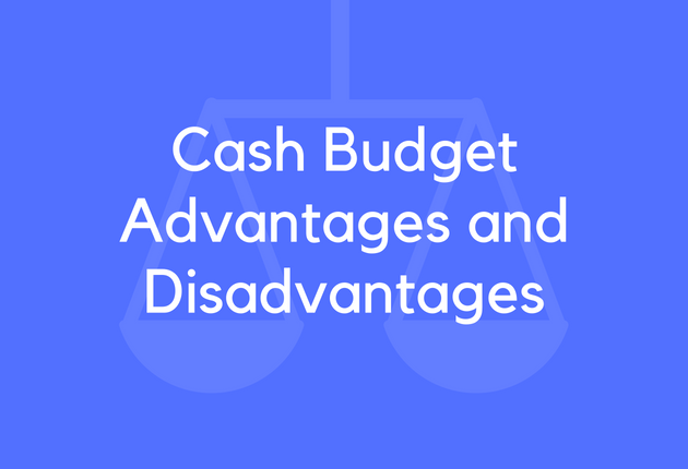 15 Cash Budget Advantages and Disadvantages - BrandonGaille com