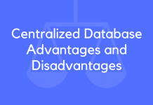 Centralized Database Advantages and Disadvantages