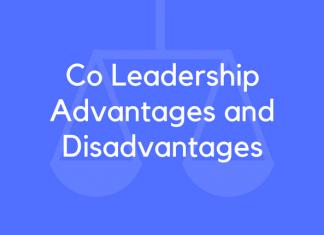 Co Leadership Advantages and Disadvantages