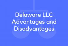 Delaware LLC Advantages and Disadvantages