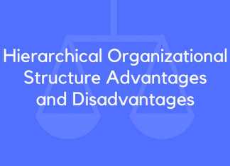 Hierarchical Organizational Structure Advantages and Disadvantages