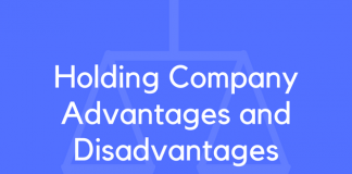 Holding Company Advantages and Disadvantages