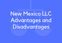 New Mexico LLC Advantages and Disadvantages