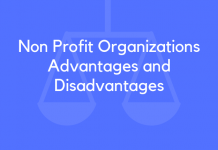 Non Profit Organizations Advantages and Disadvantages