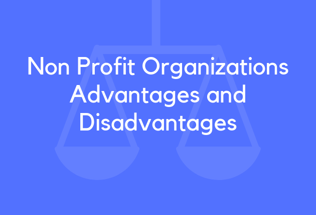 Non Profit Organizations Advantages and Disadvantages