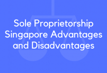 Sole Proprietorship Singapore Advantages and Disadvantages
