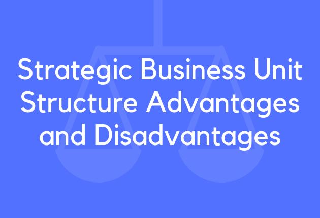 Strategic Business Unit Structure Advantages and Disadvantages