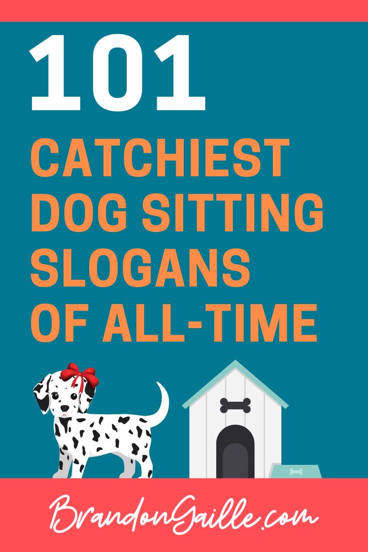 101 Catchy Dog Sitting Slogans