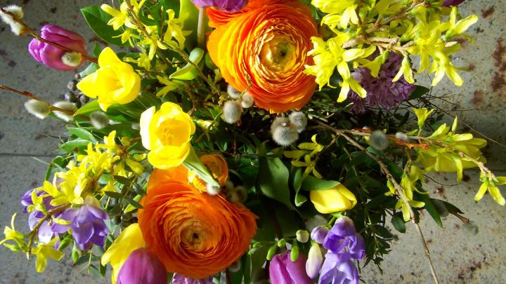 43 Good Flower Blog Names