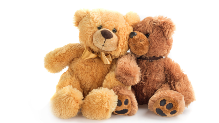 51 Teddy Bear Slogans