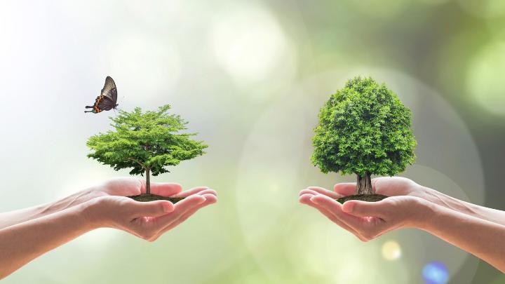 51 Good Biodiversity Slogans and Sayings